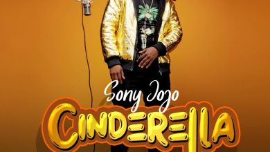 Photo of New Music- Cinderella by SonyJojo